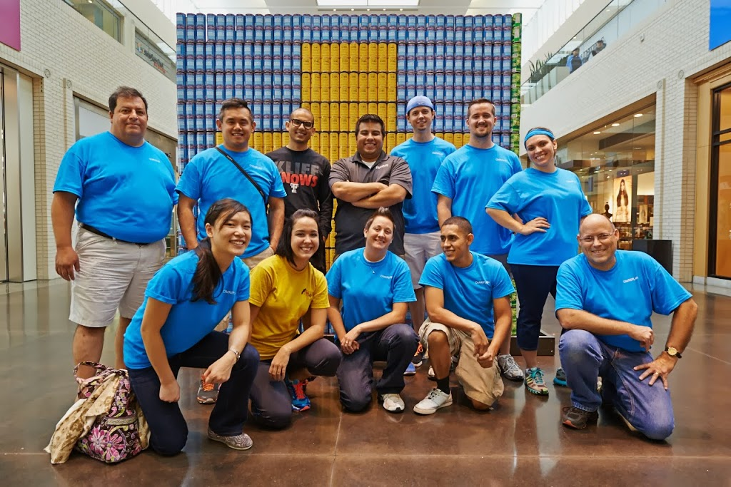 Sewell Infiniti Fort Worth >> Canstruction at Northpark Center - Images and Artifacts